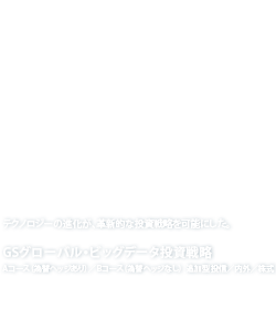 GS Global Big Data Strategy GSグローバル・ビッグデータ投資戦略